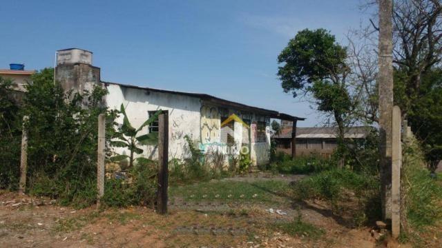Terreno à venda, 330 m² por r$ 200.000,00 - são jerônimo - gravataí/rs - Foto 3