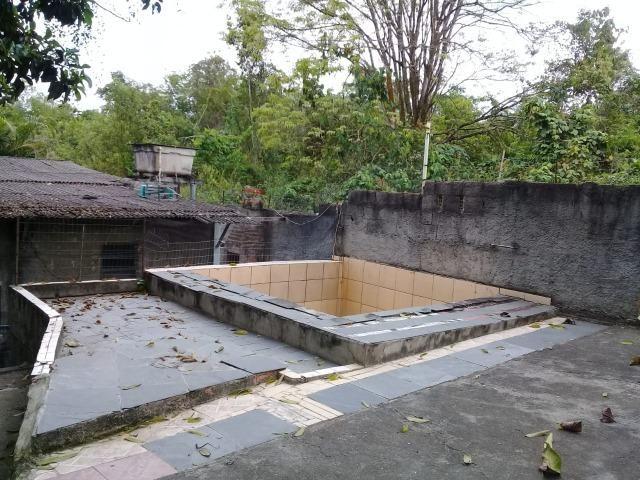 Pequeno sítio de 720 m2, todo plantado em Itambi - Foto 12