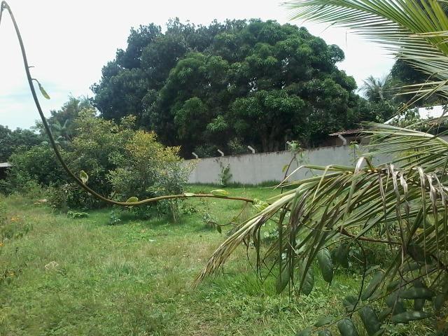 Alugo ou Vendo terreno 22x50m, na zona rural de Iranduba - Aluguel R$ 400- Venda R$ 50mil - Foto 3
