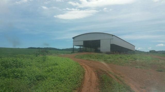 Fazenda à venda: 130 km de Brasília - DF, 1.683 hectares - R$ 40.000.000,00 - Foto 9