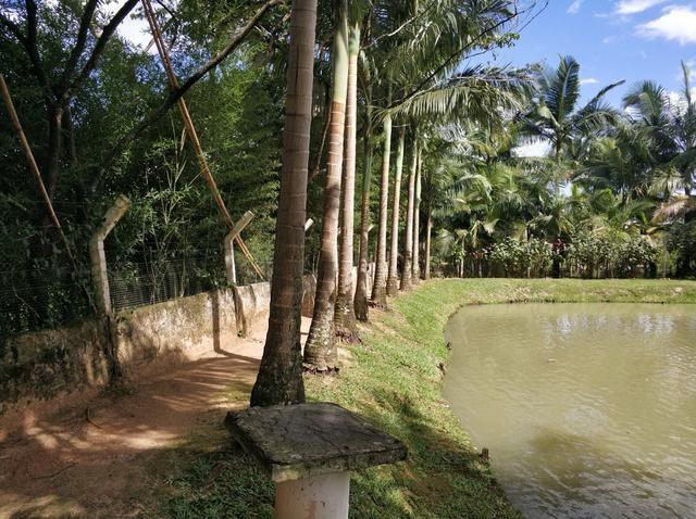 Lindo sitio urbano a menos de 4 km do centro da cidade 3 casas piscina lagoa - Foto 18