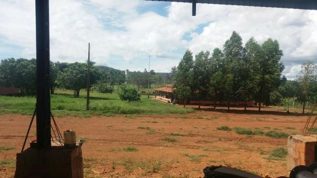 Fazenda à venda: 130 km de Brasília - DF, 1.683 hectares - R$ 40.000.000,00 - Foto 5