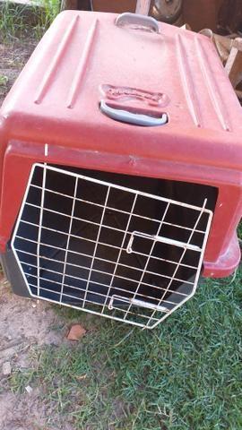 Casinha de cachorro porte médio e grande - Foto 2