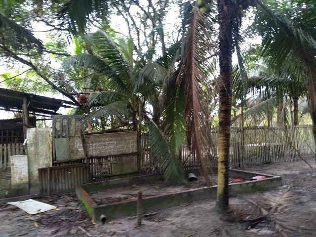 Sitio no cupiuba em Castanhal-Pa 100x450 R$ 120 mil reais troco em casa em Castanhal - Foto 12