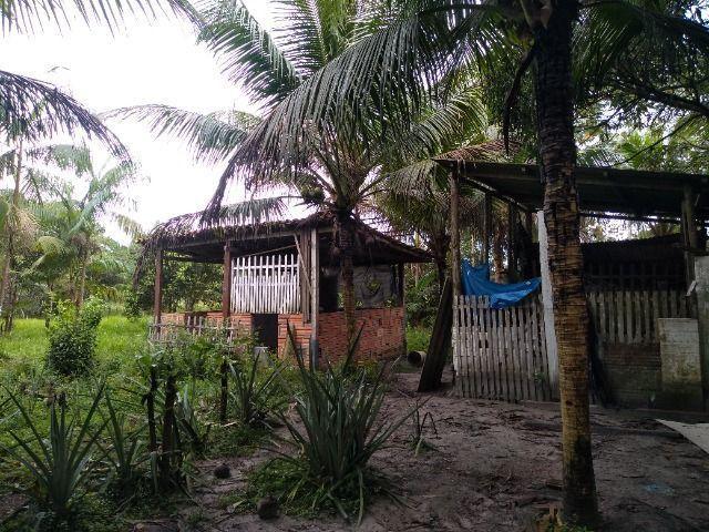 Sitio no cupiuba em Castanhal-Pa 100x450 R$ 120 mil reais troco em casa em Castanhal - Foto 16
