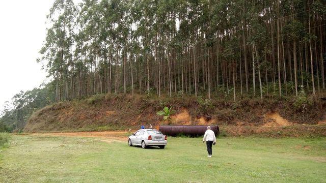 Fazenda com 566 hectares com 400.000 pés de eucaliptos - Foto 18