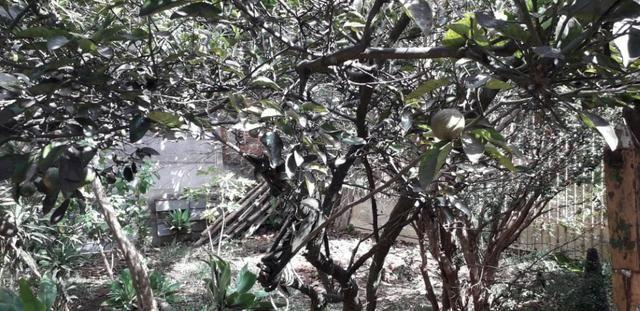 A venda casa em Taguatinga Sul estuda permuta em casa até R$ 250.000 vale a pena conferir - Foto 15
