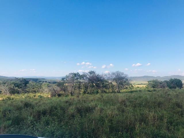 Fazenda 11 Alqueires Municipio Cocalzinho - Foto 3