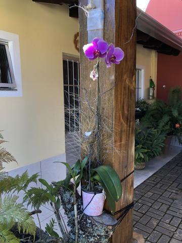 Casa em Chapada dos Guimarães - Foto 9