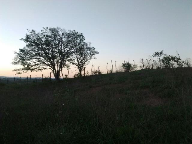 Lotes, lote, Terreno, Terra, Loteamento em Surubim - Foto 4
