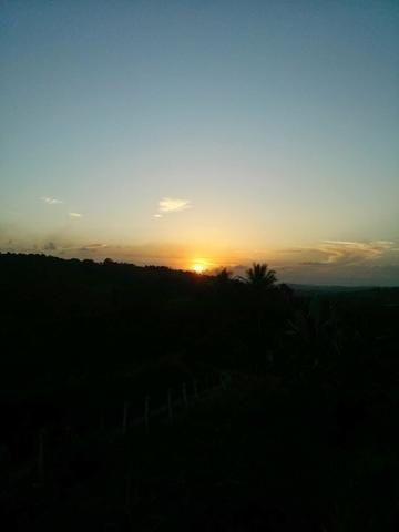 Vendo Sítio em Vitória de Santo Antão - Foto 8