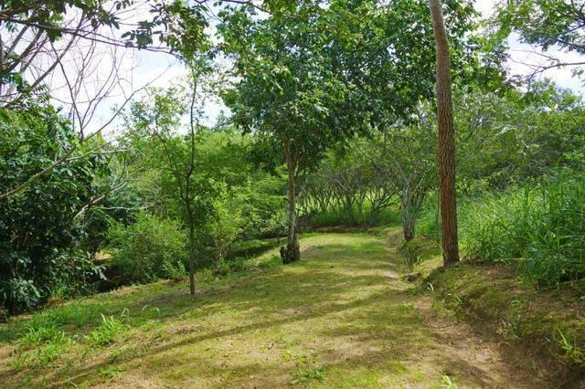 Terreno no Condimínio Monte Verde, Alto Padrão em Caruaru, BR-232 - Foto 12