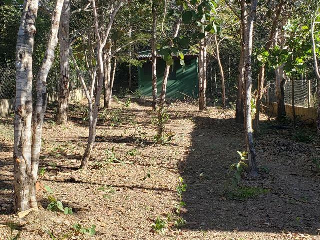 Rancho casa corumba 3 - Foto 7