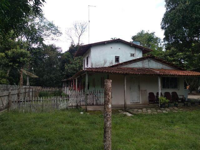 Sitio no cupiuba em Castanhal-Pa 100x450 R$ 120 mil reais troco em casa em Castanhal - Foto 10