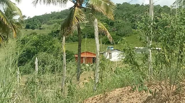 Excelente propriedade de 9.5 hectares, rica em água, em Glória do Goitá-PE - Foto 3