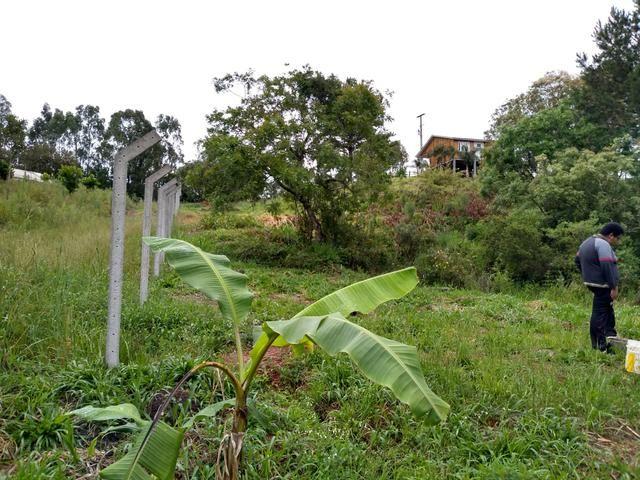 Chácara em fazenda Rio grande - Foto 6