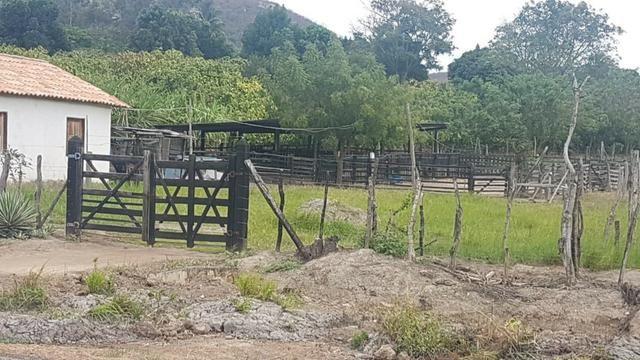Sítio Irrigado Próximo ao Centro de Jequié com 40.000 m2 - Foto 16