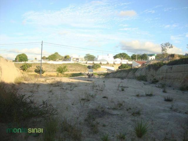 Terreno à venda, 367 m² por R$ 57.000,00 - Condomínio Privê Portal do Agreste - São João/P - Foto 5