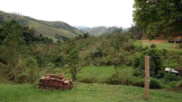 Fazenda com 566 hectares com 400.000 pés de eucaliptos - Foto 12
