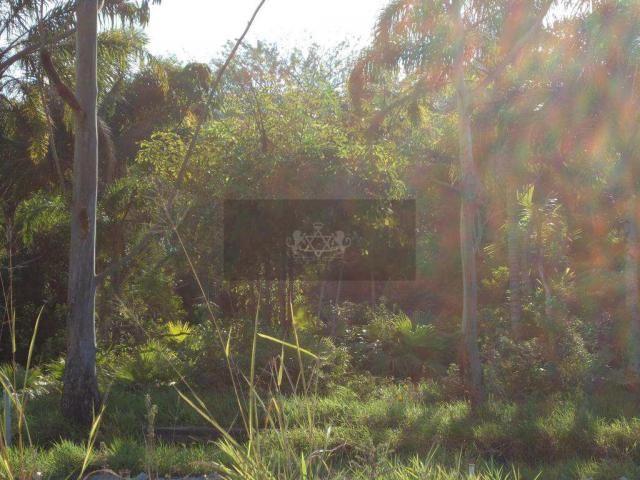 Terreno à venda em Poiares, Caraguatatuba cod:547 - Foto 15