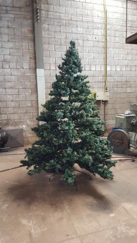 Árvore de Natal - Foto 3