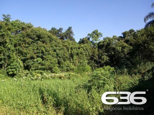 Terreno | Joinville | Santo Antônio - Foto 4