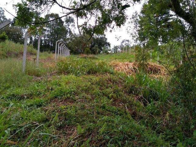 Chácara em fazenda Rio grande - Foto 3