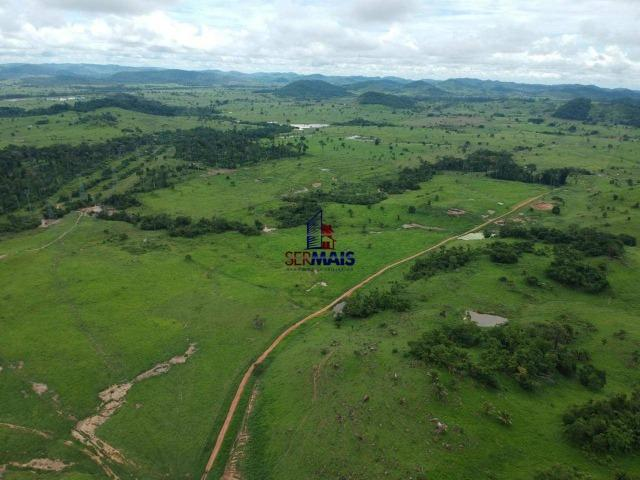 Fazenda à venda, por R$ 10.000.000 - Zona Rural - Presidente Médici/RO - Foto 5