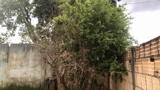 Lote de esquina 360m2 com Casa e Barraco Murado no Jardim Ingá! - Foto 4