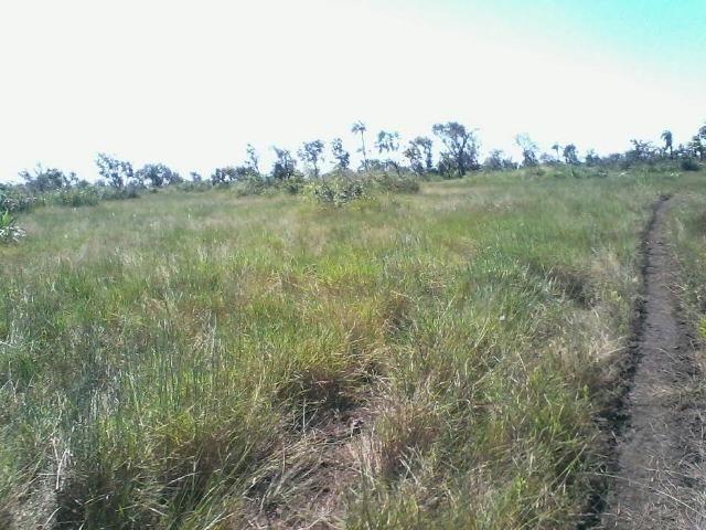 Fazenda em Luciara, MT - Foto 9