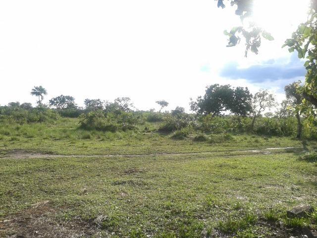Fazenda em Luciara, MT - Foto 15