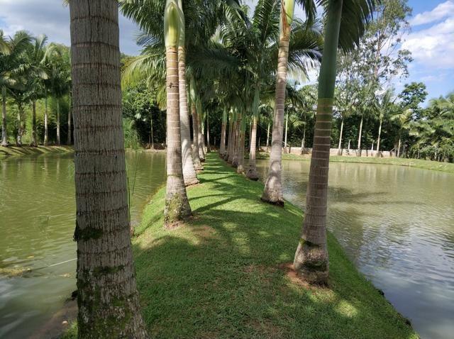 Lindo sitio urbano a menos de 4 km do centro da cidade 3 casas piscina lagoa - Foto 16