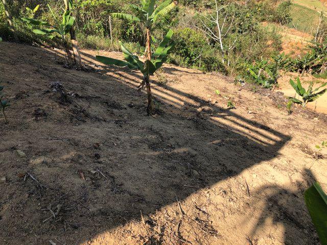 Sítio em Santa Teresa 1,5km de estrada de chão - Foto 14