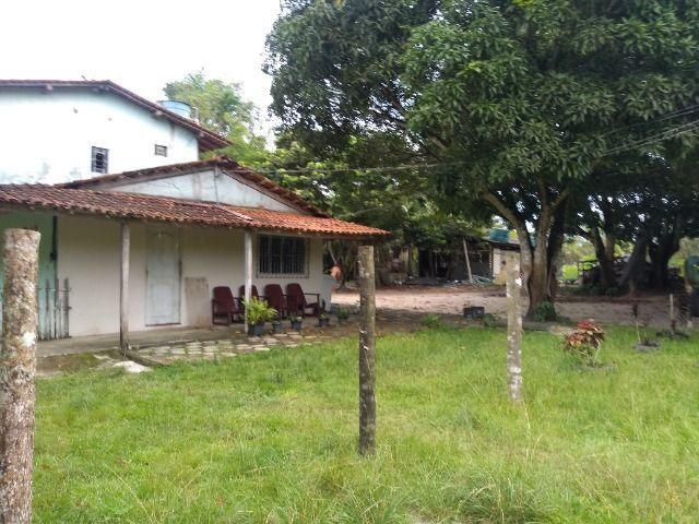 Sitio no cupiuba em Castanhal-Pa 100x450 R$ 120 mil reais troco em casa em Castanhal - Foto 7