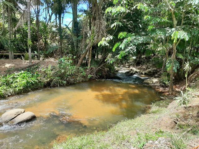 Alugamos Sítio com Cachoeira - Santa Leopoldina - Foto 5