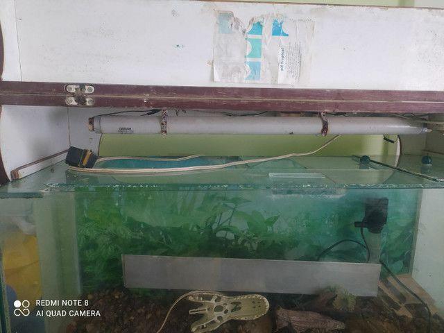 Vendo aquário completo com tampo de madeira