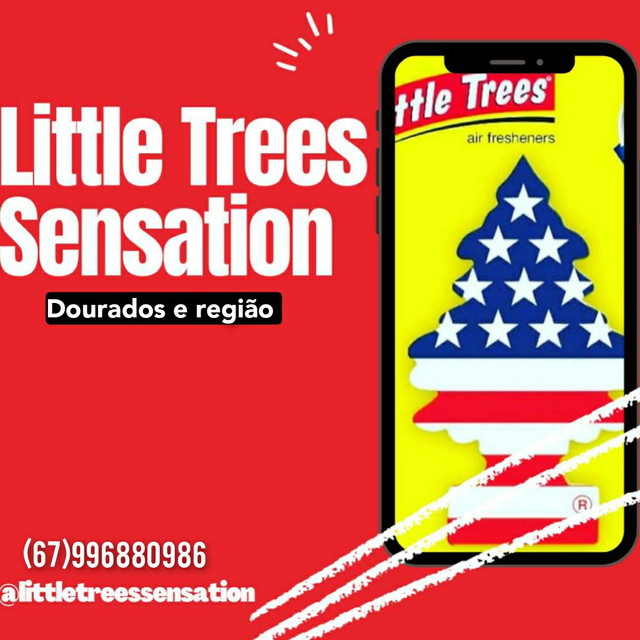 Vendo Aromatizantes Importados dos EUA (Little Trees) - Foto 2