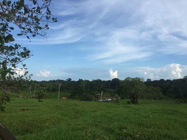 Área de terra 22 hectares