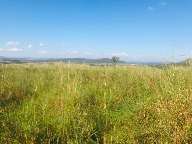 Fazenda 11 Alqueires Municipio Cocalzinho - Foto 7