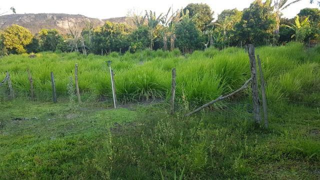 Sítio Irrigado Próximo ao Centro de Jequié com 40.000 m2 - Foto 4