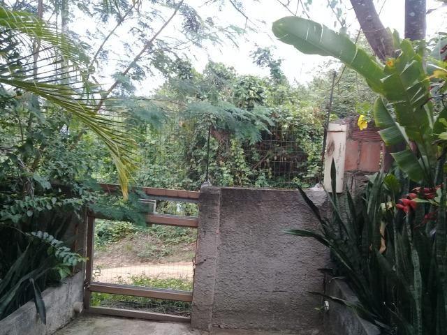 Pequeno sítio de 720 m2, todo plantado em Itambi - Foto 18