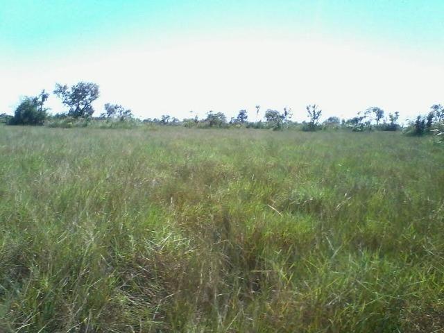 Fazenda em Luciara, MT - Foto 12