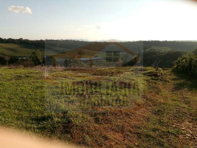 Haras para Venda, Tijucas do Sul / PR, bairro Pinhal, 8 dormitórios, 8 suítes, 1 banheiro - Foto 19
