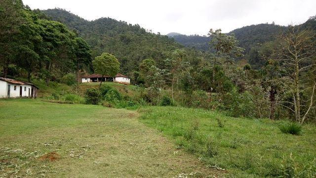 Fazenda com 566 hectares com 400.000 pés de eucaliptos - Foto 13