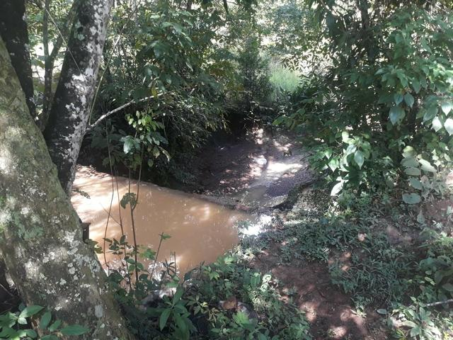 Vendo Chácara Escriturada de 2 hectares na Região do Novo Gama à 10 minutos do Lago Azul - Foto 4