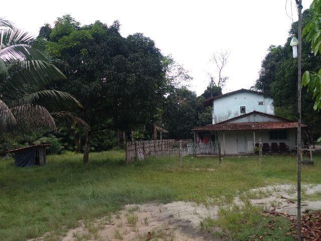 Sitio no cupiuba em Castanhal-Pa 100x450 R$ 120 mil reais troco em casa em Castanhal - Foto 3