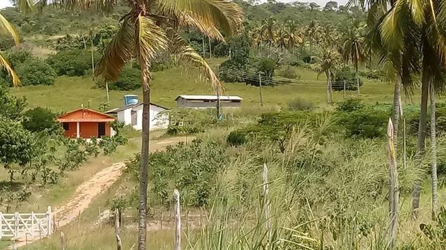 Excelente propriedade de 9.5 hectares, rica em água, em Glória do Goitá-PE