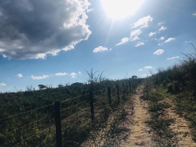 Fazenda 11 Alqueires Municipio Cocalzinho - Foto 9