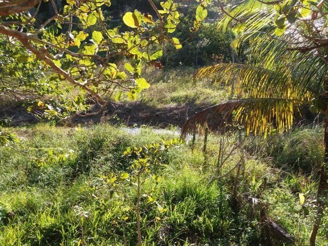 Sítio em Tamandaré - Foto 5