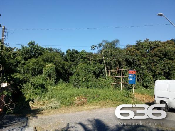Terreno | Joinville | Santo Antônio - Foto 2